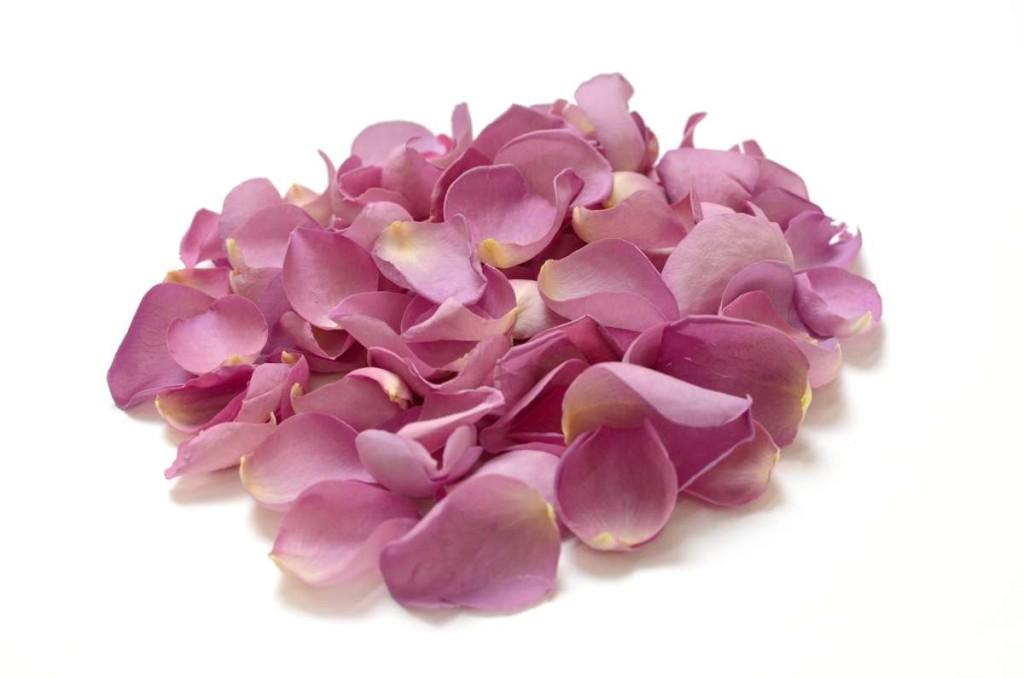 ShropshirePetals.com Parma Violet Rose Petals £15.95 per litre (2)-web