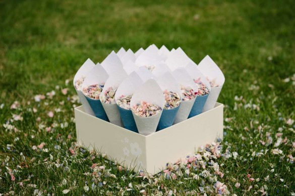 Shropshire petals comp