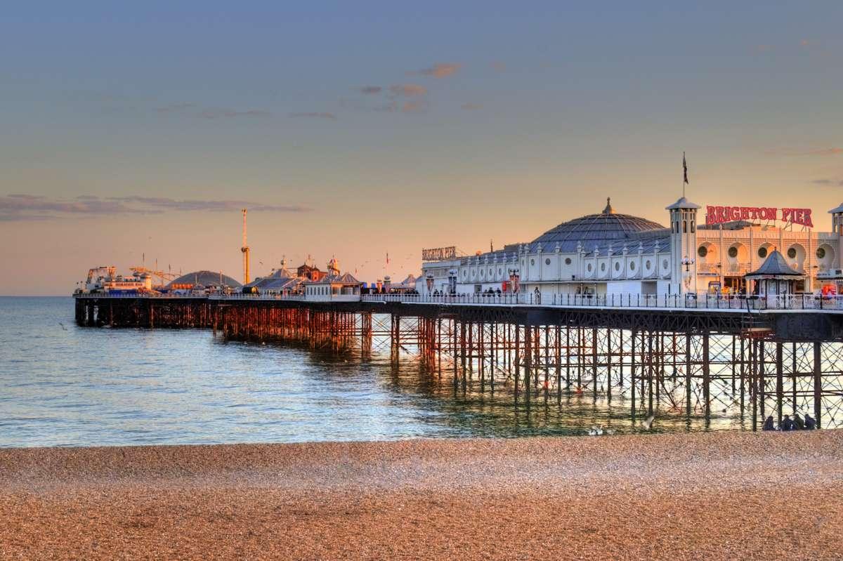Hen - Brighton