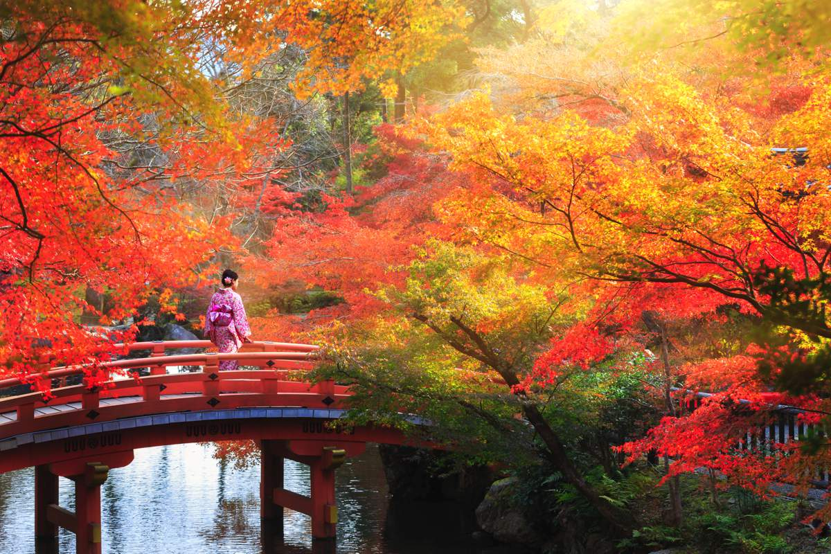honeymoon in... Japan