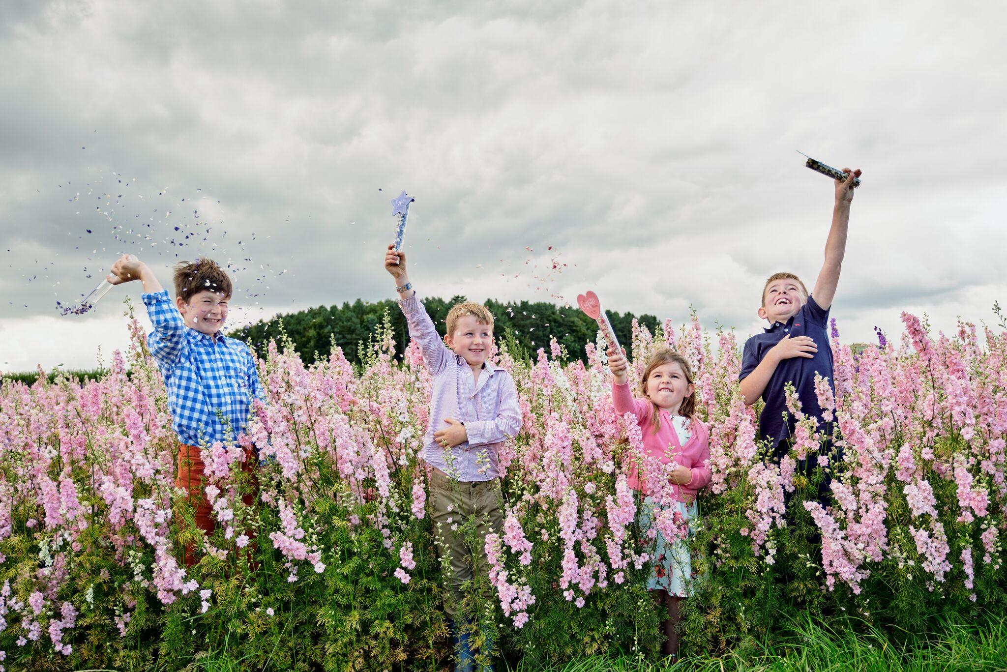 ShropshirePetals.com Mixed Confetti Wands £9.75 pack of 3 (6)