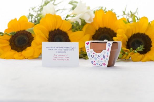 Grow A Sunflower Mini Terracotta Pot