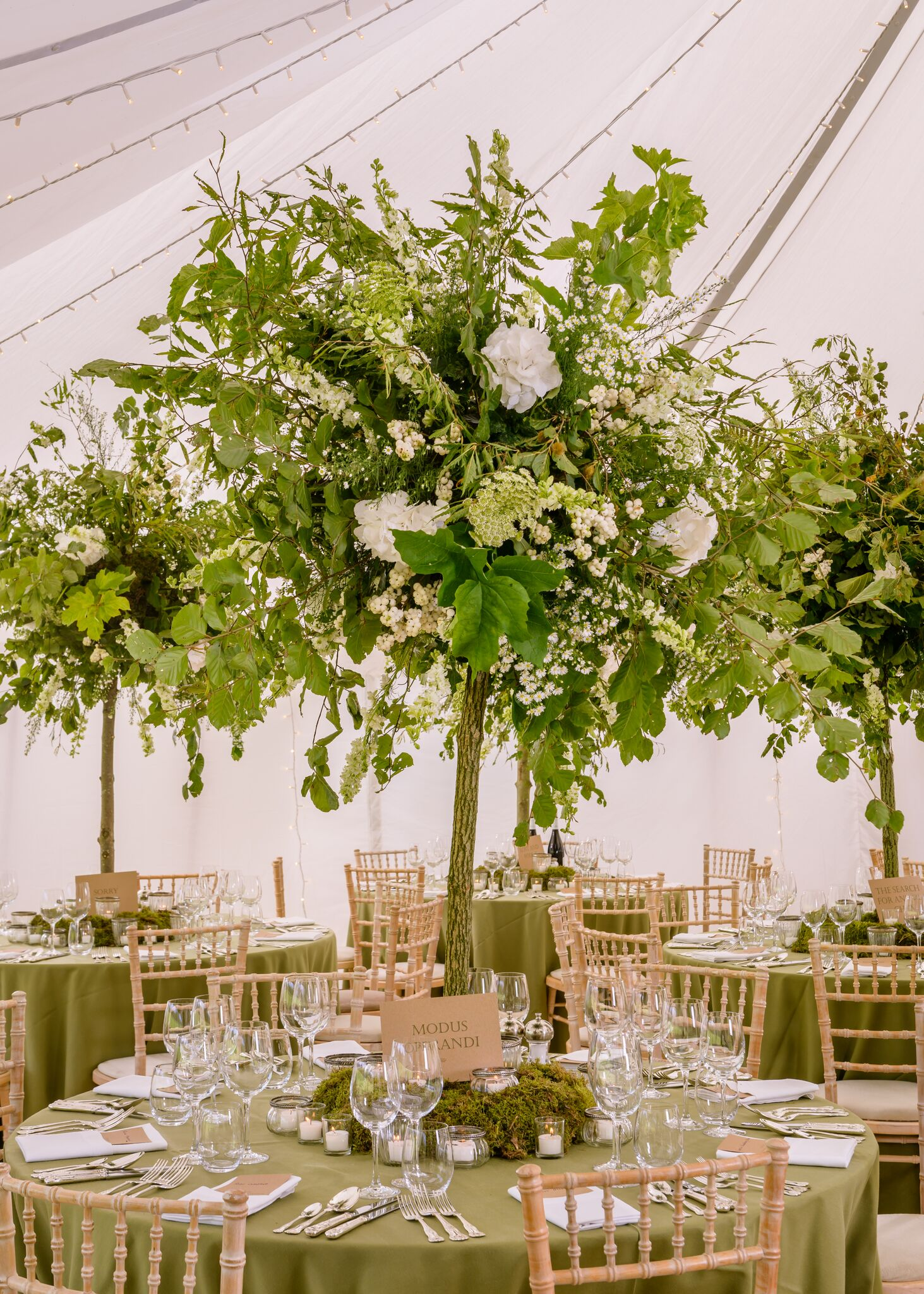 Get-Knotted Enchanted Forest theme table decor (image credit - kevingreenfield.com) (7)_preview