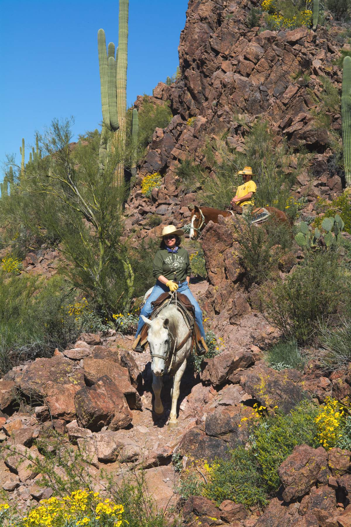 White Stallion Guest Ranch, Arizona, Cowboy & cowgirl,
