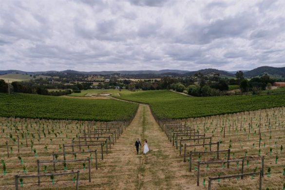 An elegant vineyard wedding