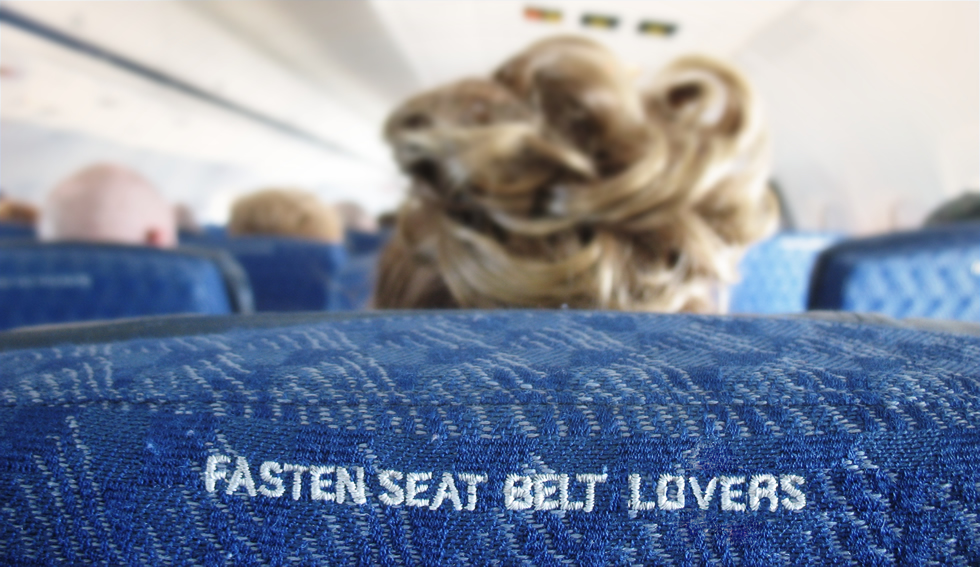 fasten-seat-belt-lovers