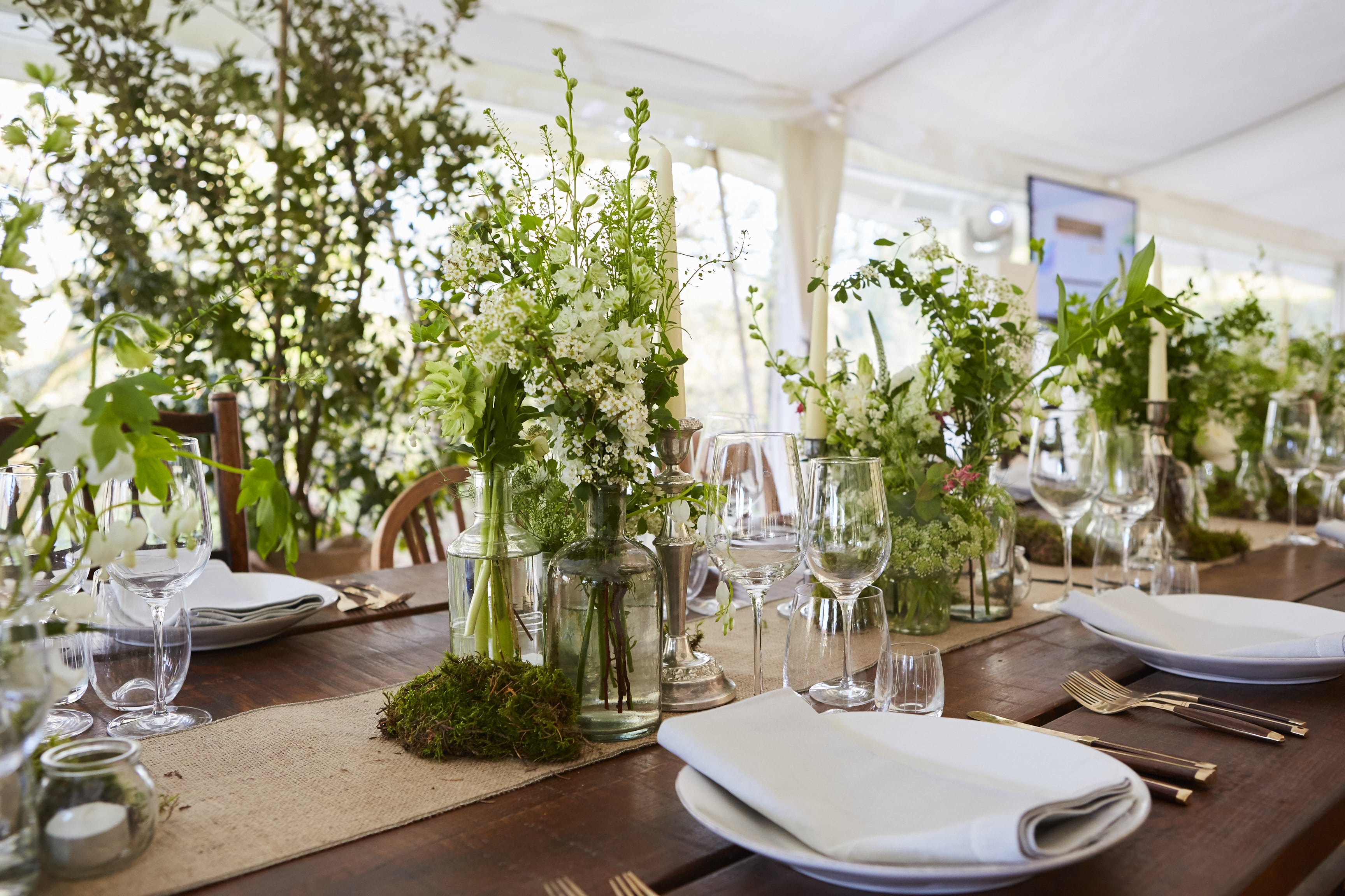 We Love A Bit Of Greenery And Re Not Alone The Team At Arabian Tent Company Share Their Thoughts On Biophilic Design How It Can Help You To