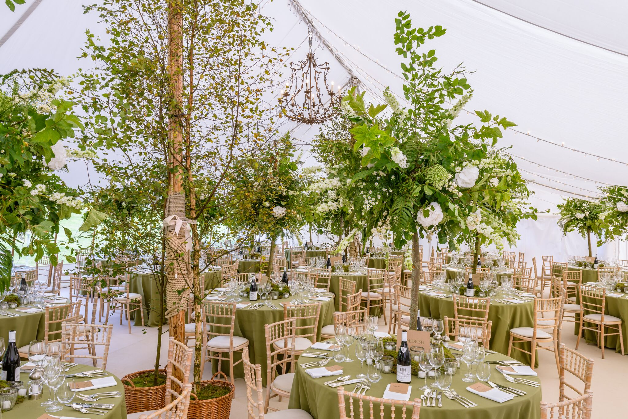 Get-Knotted Enchanted Forest theme styling (image credit - kevingreenfield.com) (6)_preview