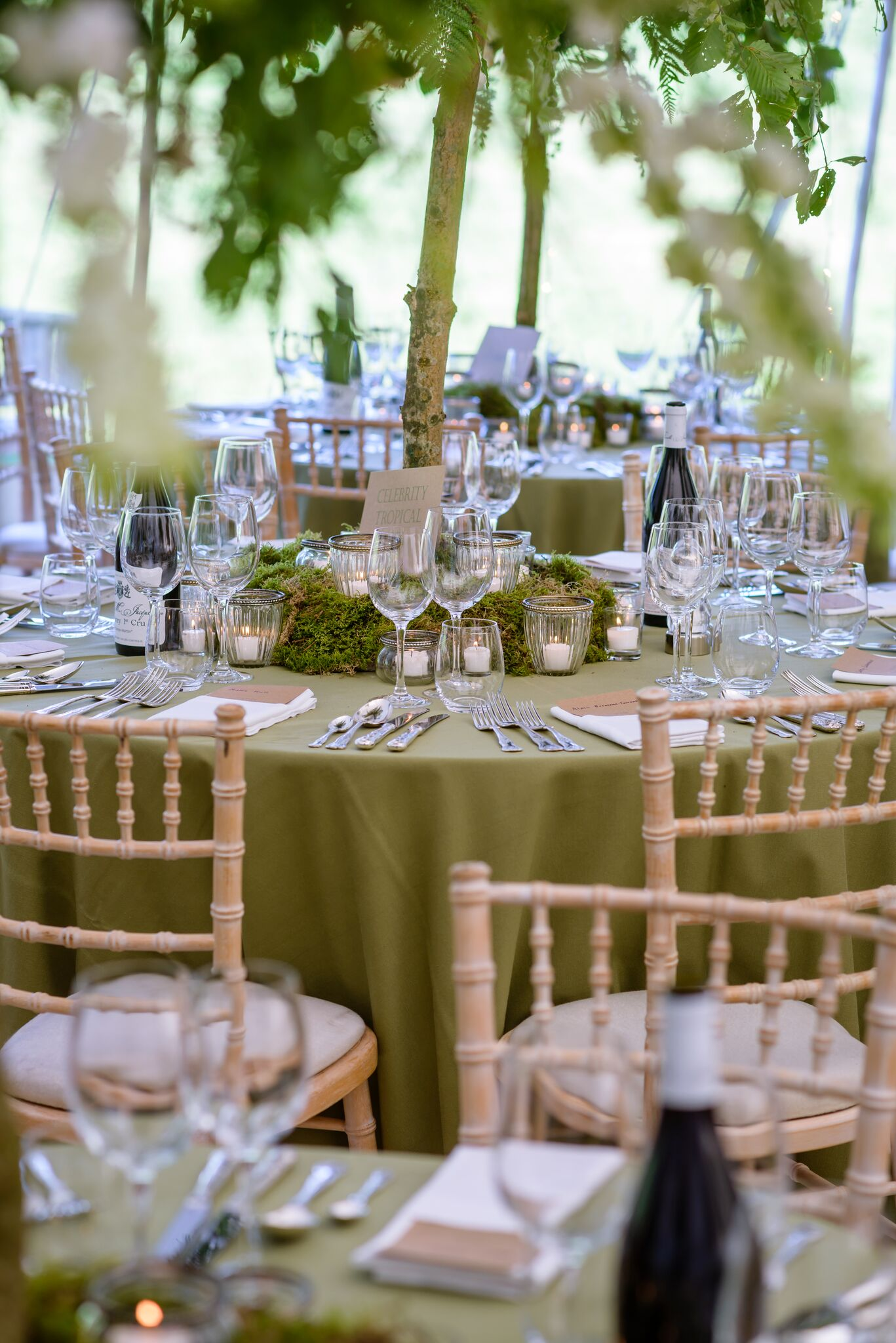 Get-Knotted Enchanted Forest theme table decor (image credit - kevingreenfield.com) (17)_preview