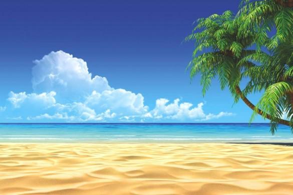 tropical paradise theme